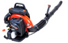 Echo PB-755 Backpack Blower