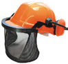 Protective Helmet, Visor and Ear Defenders